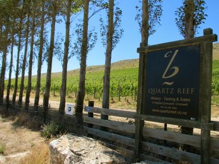 Bendigo Estate Vineyard