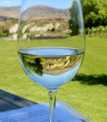 2011 Carrick Sauvignon Blanc w/ Stunning Vista