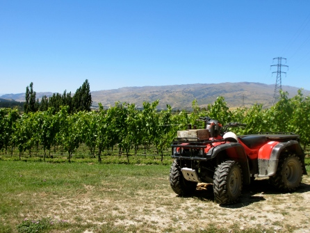 Felton Road Winery, Cromwell Central Otago