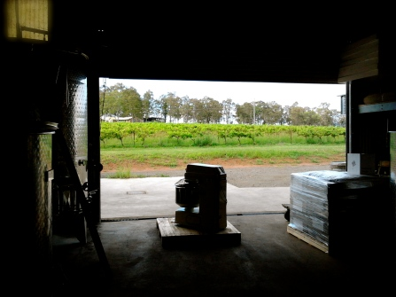 From the vineyard to the winery...