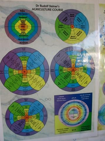 Steiner biodynamic course chart at Quartz Reef (NZ)