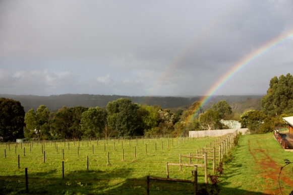 Double Rainbow! - Avani - photo by The Wine Idealist