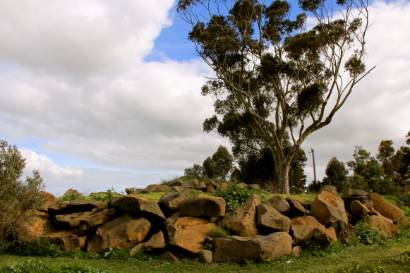Massive Rocks / Mean Soils - photo by The Wine Idealist