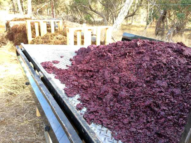 Grape Marc for Composting - photo courtesy of Freehand Wines