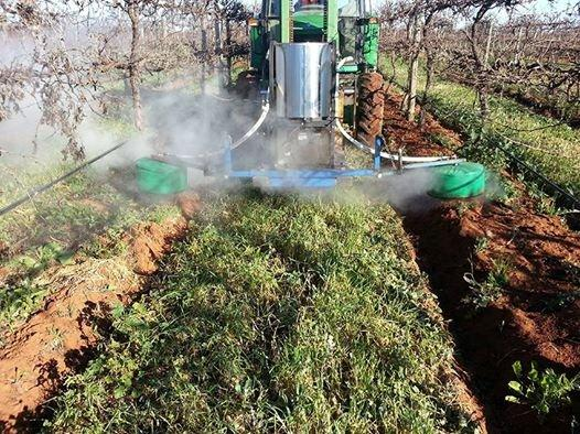 Steam Trials - photo courtesy of Angove Wines