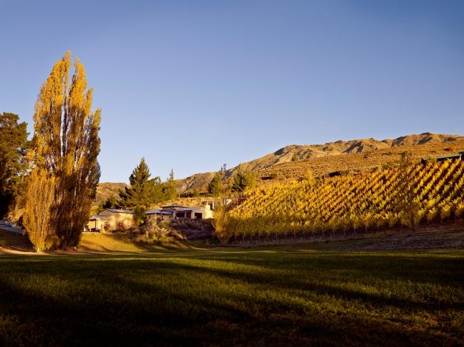 Mount Edward, Gibbston Valley - photo courtesy of Mount Edward