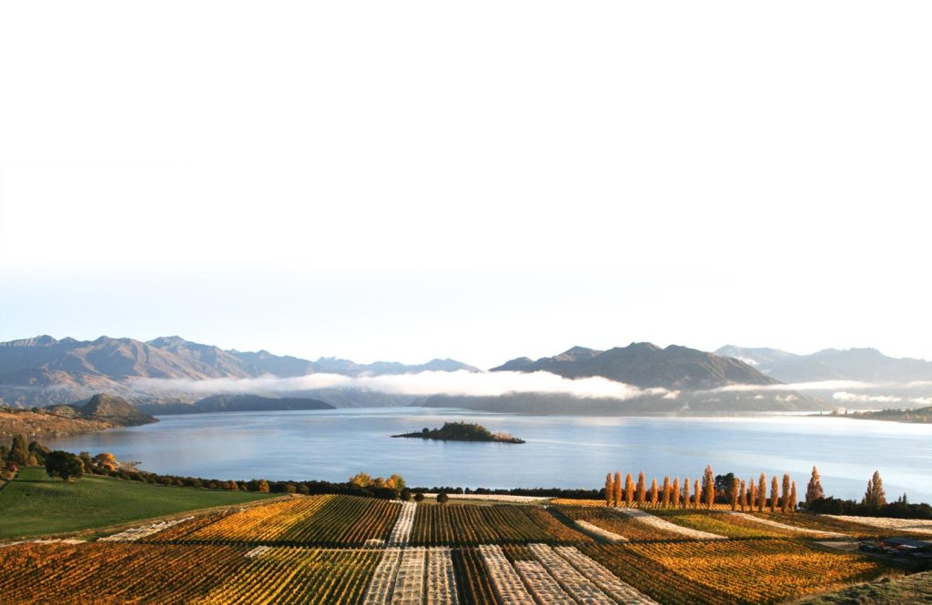 Rippon Vineyards - photo courtesy of Rippon