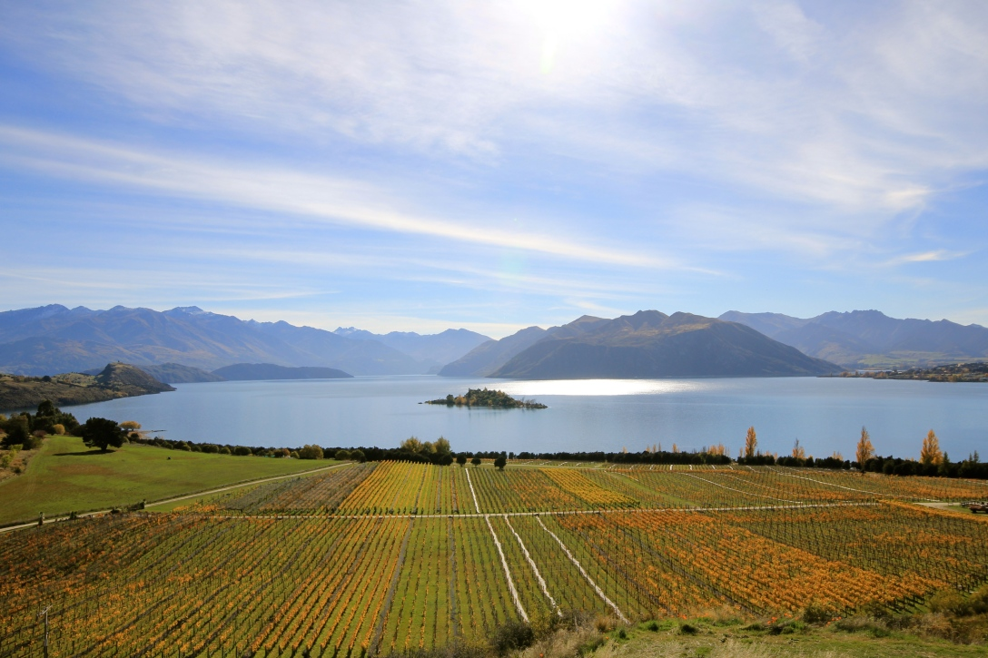 Rippon, Wanaka - photo by The Wine Idealist