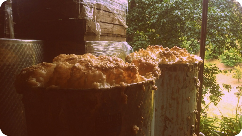 Wild Ferment - photo courtesy of The Other Right