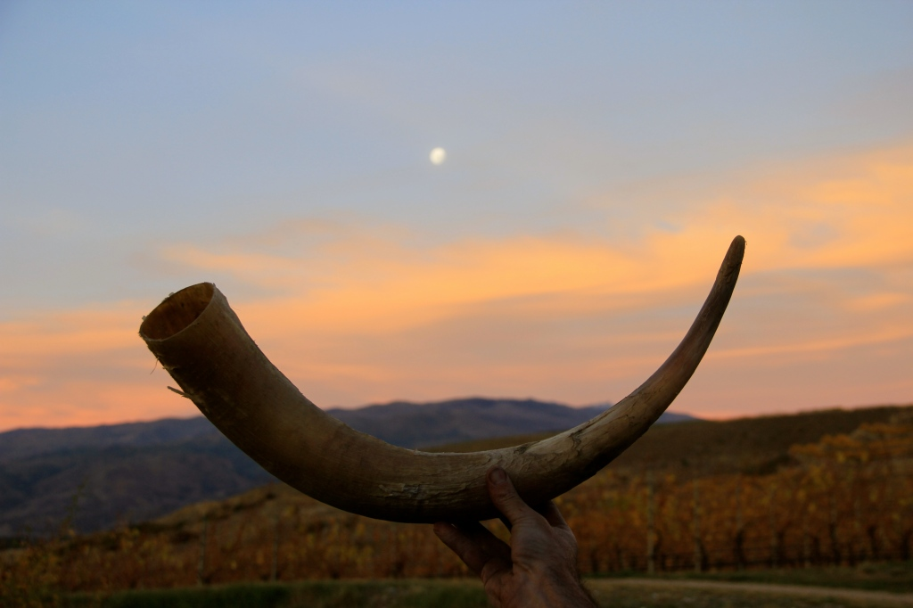 Horn and Moon, Felton Road - photo by The Wine Idealist