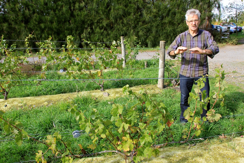 Winegrower, Clive Paton - photo by The Wine Idealist