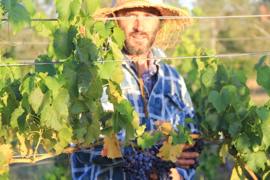 Sam Statham - photo by The Wine Idealist